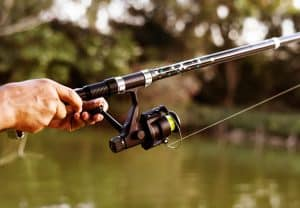 Best Fishing Rods