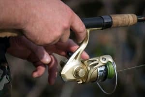 What should be considered before buying a fishing line