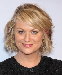 15 Ideas of Amy Poehler Bob Hairstyles