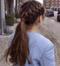 Photo Gallery of Braids Hairstyles For Long Thick Hair ...