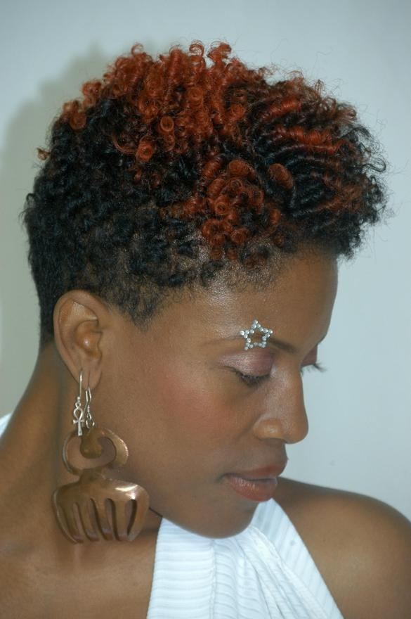 30 African American Natural Hairstyles Youtube Hairstyles Ideas