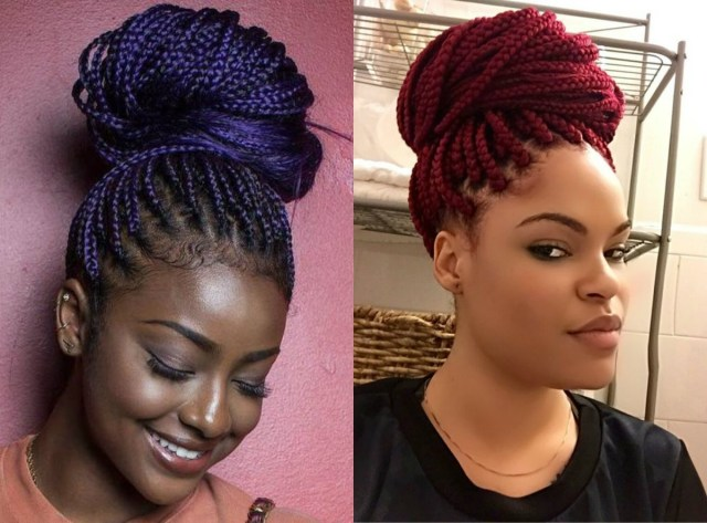 2019 Latest Box  Braids  Updo  Hairstyles