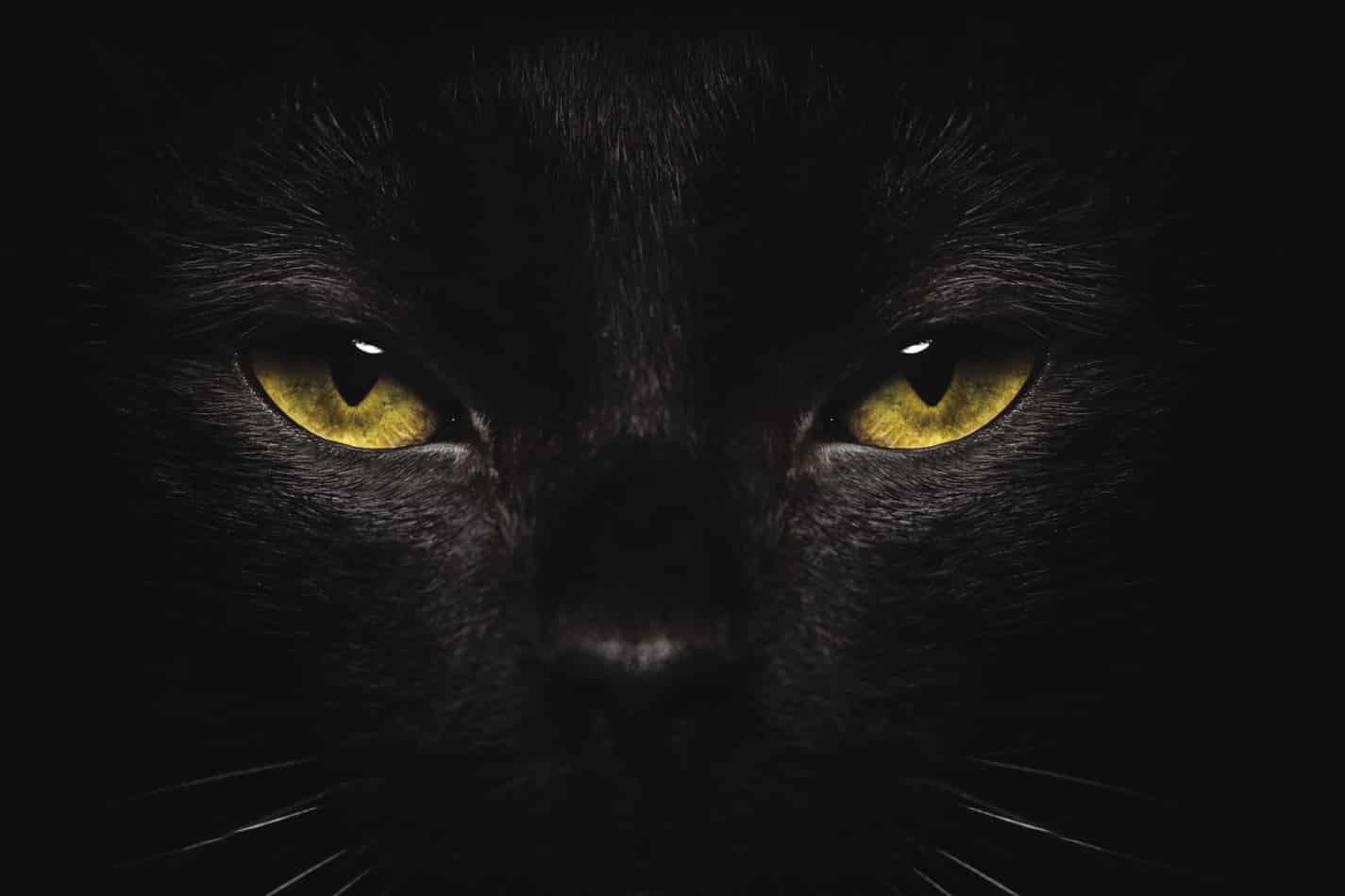 Psychologie de la superstition – Comment ça fonctionne exactement ?