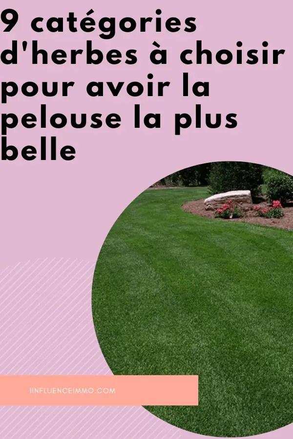 Comment Avoir Une Belle Pelouse : comment, avoir, belle, pelouse, Types, D'herbes, Résistantes, Luxuriantes
