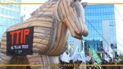 TTIP-Pferd