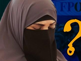 FPÖ, Islam