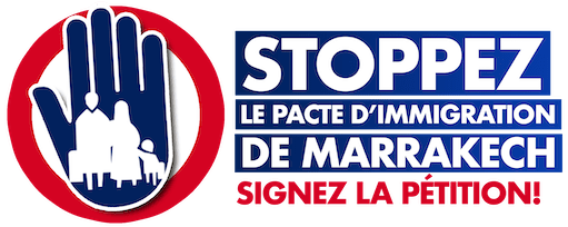 Danger : La vente de la France à l'ONU est prévue au 10 décembre 2018.
