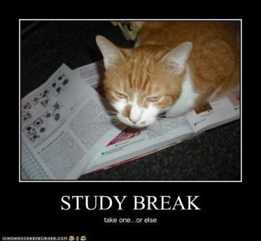 Study Hacks: Take Study Breaks