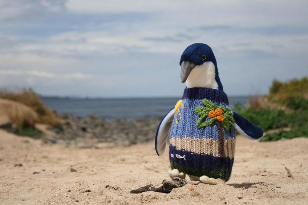 adaymag-knit-a-sweater-save-a-penguin-03
