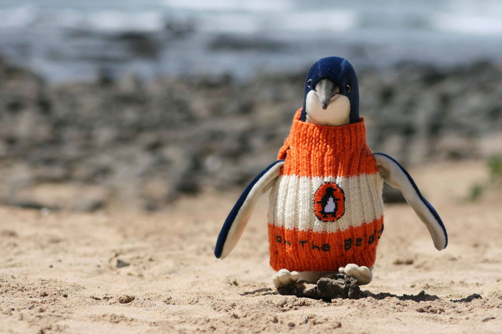 adaymag-knit-a-sweater-save-a-penguin-04