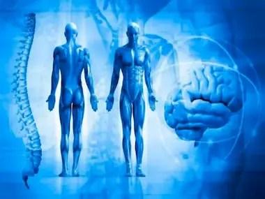Blog-el-cuerpo-humano