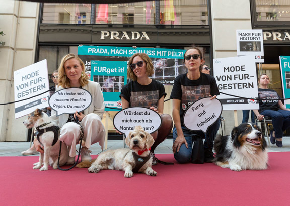 VIER PFOTEN protestiert gegen Pelz bei Prada.