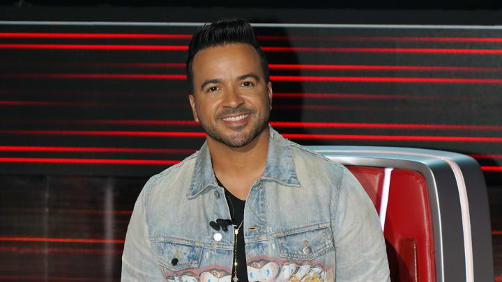 What is Luis Fonsi's net worth?