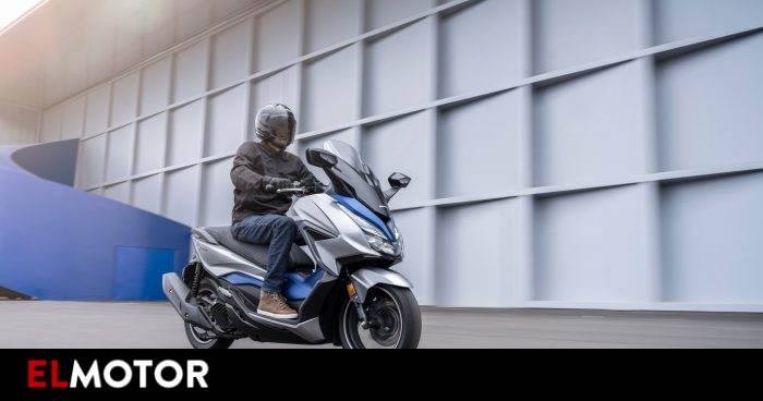 Honda Forza: the scooter is updated in all available displacements   Motorcycles