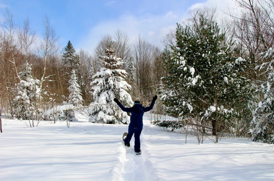 What to do in Quebec in winter?