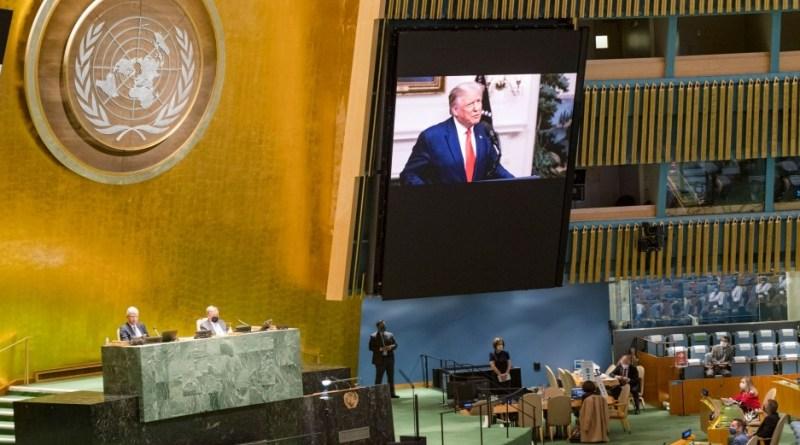 ¿A quién la ONU debería castigar?