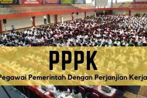 Inilah 147 Daftar Jabatan Fungsional Yang Bisa Diisi oleh PPPK