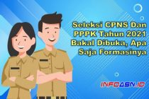 Seleksi CPNS dan PPPL 2021 Bakal Dibuka