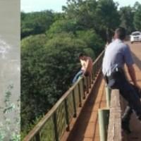 En estado de ebriedad se arrojó de un puente y tuvieron que rescatarlo
