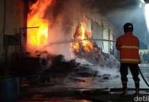 Kebakaran Gudang Egg Tray di Blitar
