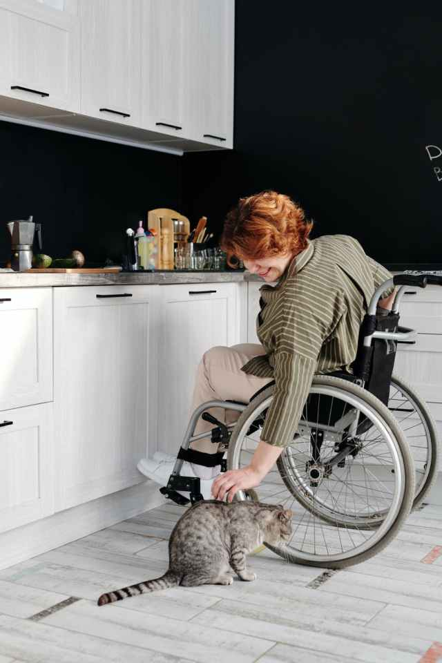 woman sitting on wheelchair while touching her cat