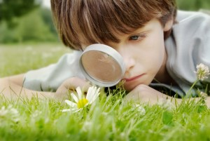 Boy holding a magnifying glass to look at a flower.