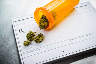 Marijuana Drug Testing Compliance