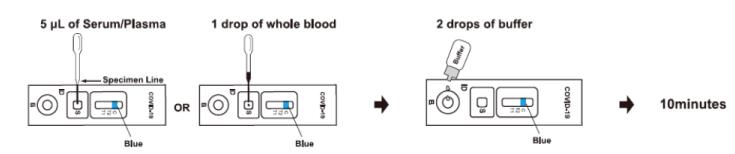 COVID-19 IgG/IgM Antibody Rapid Test