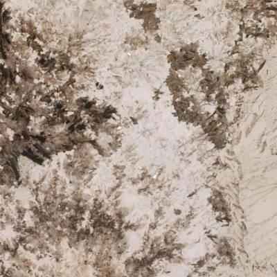 Patagonia Granite Countertop