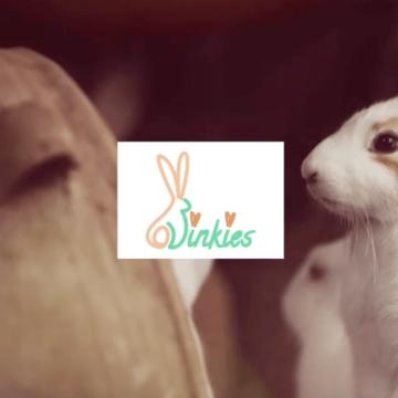 Deerlijkse webshop Binkies sleept Safeshops Diamond Award in de wacht