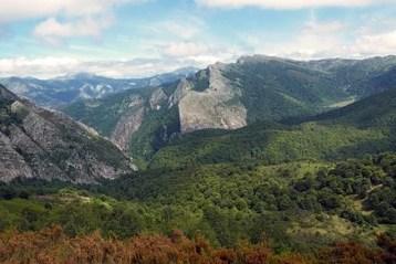 """""""si lo que se busca son frondosos bosques de verdes árboles, entonces habrá que dirigirse al norte del país, comentan desde La Vallicurera""""."""