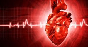 4702027-ecg-abstract-backgrounds-with-human-3d-rendered-heart