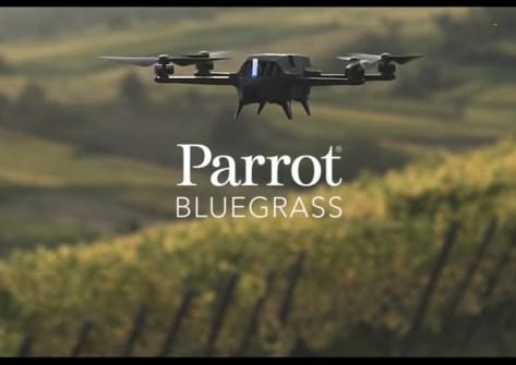 parrot bluegrass drone per l'agricolutura-nuovo drone parrot-drone agricoltura