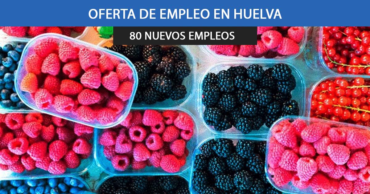Se necesitan 50 empleados para trabajar en la campaña de cítricos y frutos rojos en Huelva