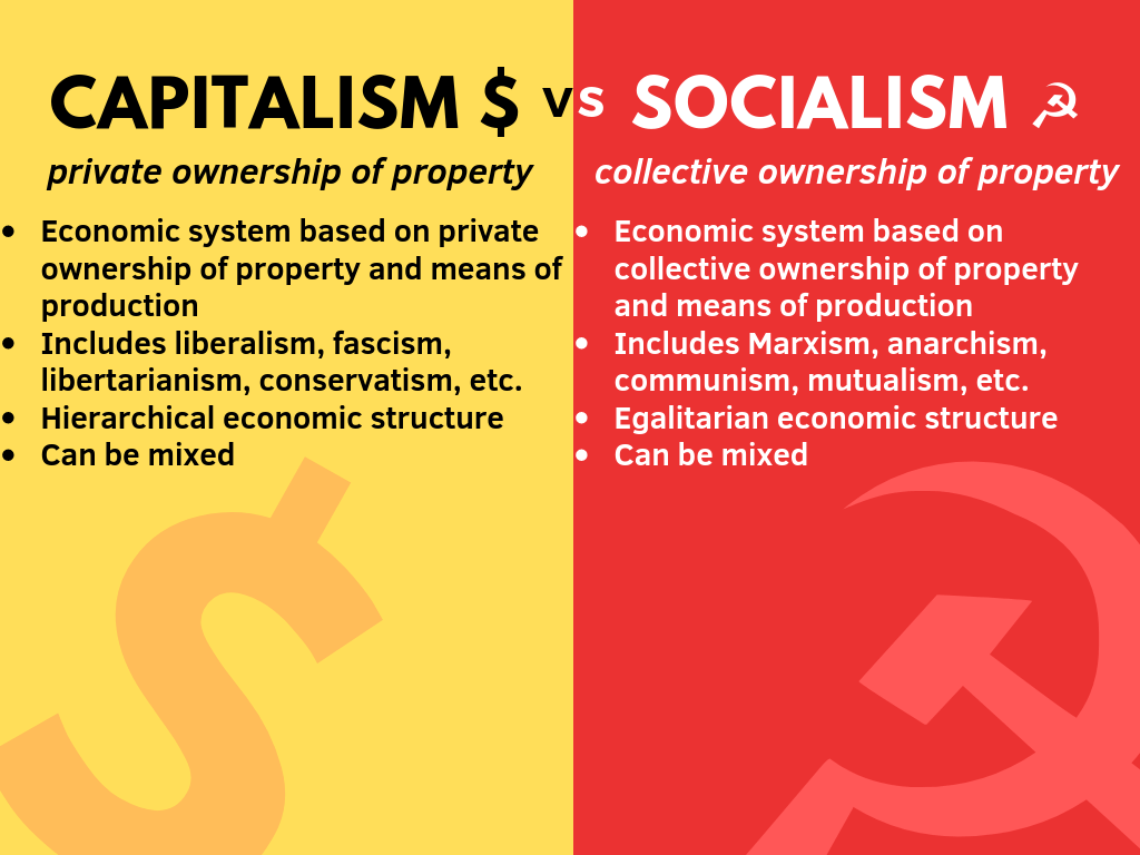 Infographic Capitalism Vs Socialism Self Made