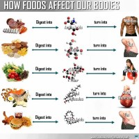Infographic: How Foods Affect Our Bodies