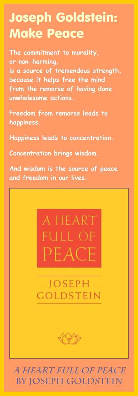 Joseph Goldstein - A Heart Full of Peace