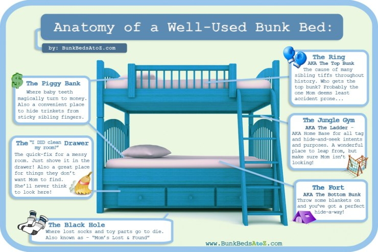 Anatomy Of A Well-Used Bunk Bed - Infographic Facts