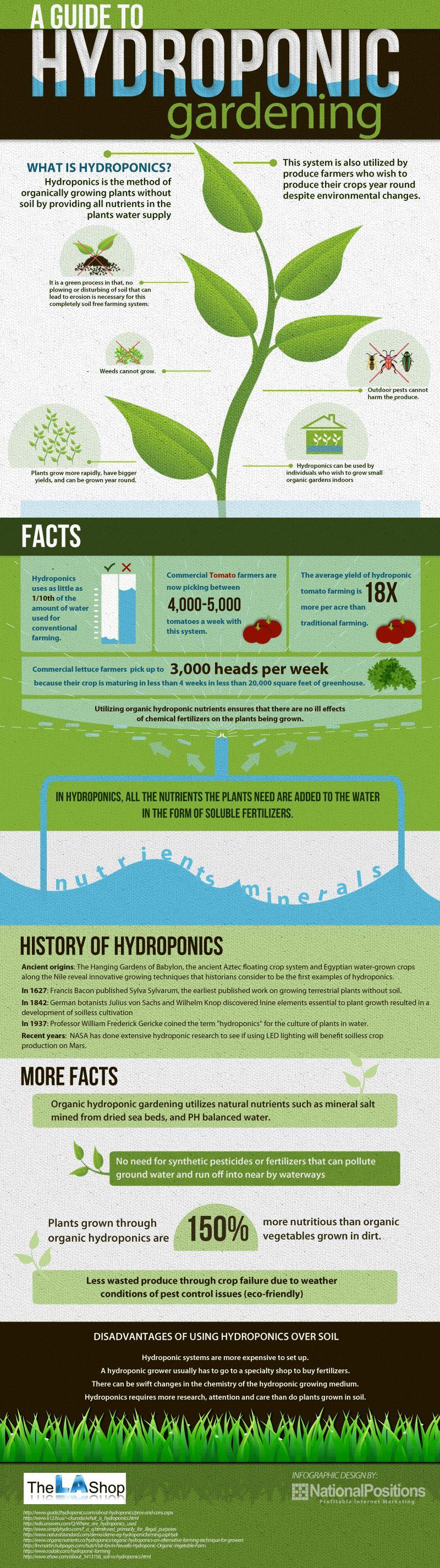 a-guide-to-hydroponic-gardening_50e13e6e99d21