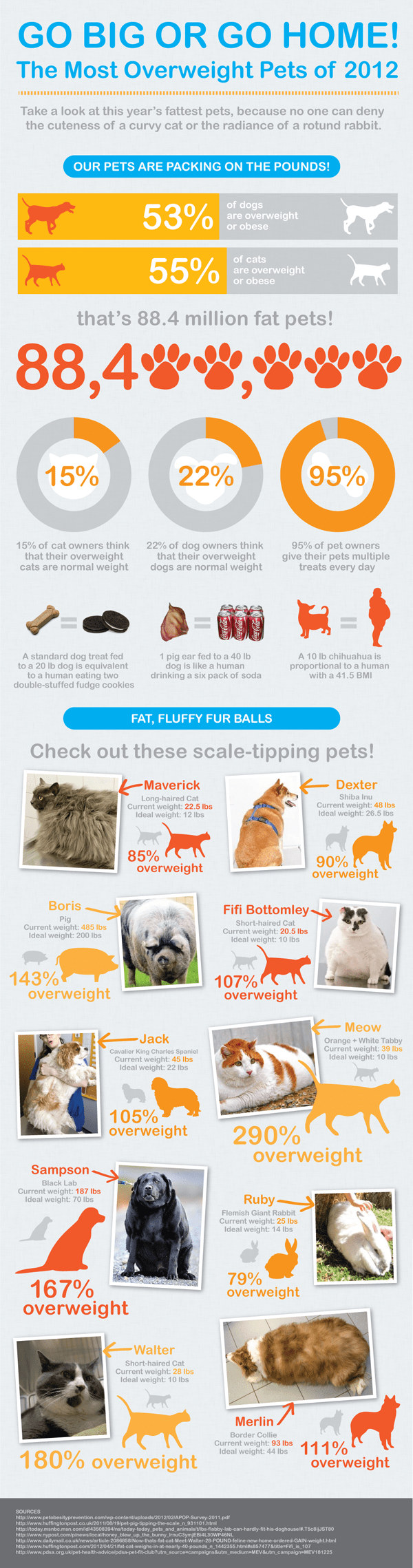 pet-obesity-is-getting-obesely-ridiculous-over-88-million-pets-are-fat_50a17aa70165e