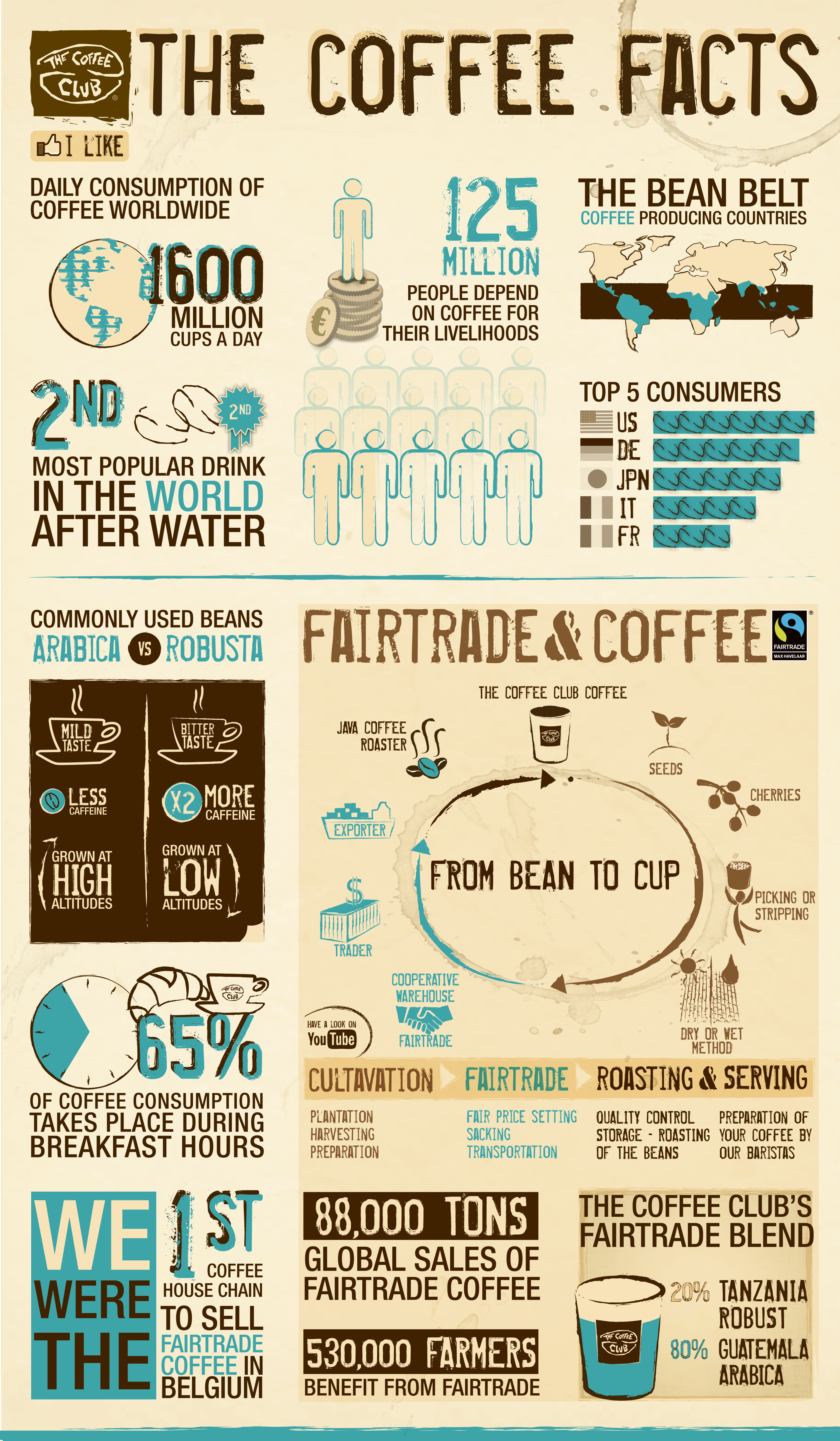 The coffee facts TCC v3