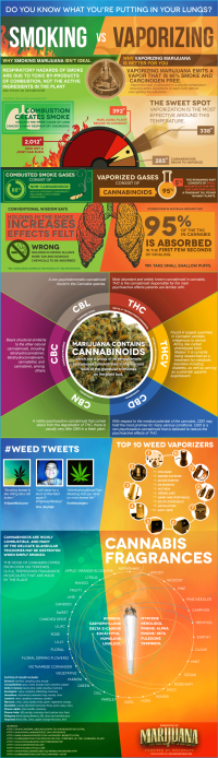 Weed Vaporizer vs Smoking - iNFOGRAPHiCs MANiA