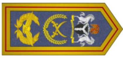 Marshal of the Air Force