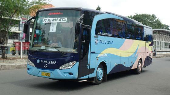 Agen Sewa Bis Pariwisata Blue Star di Bintaro Jakarta