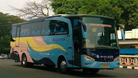 infohargasewabusjakarta-sewa-bus-blue-star-tangerang