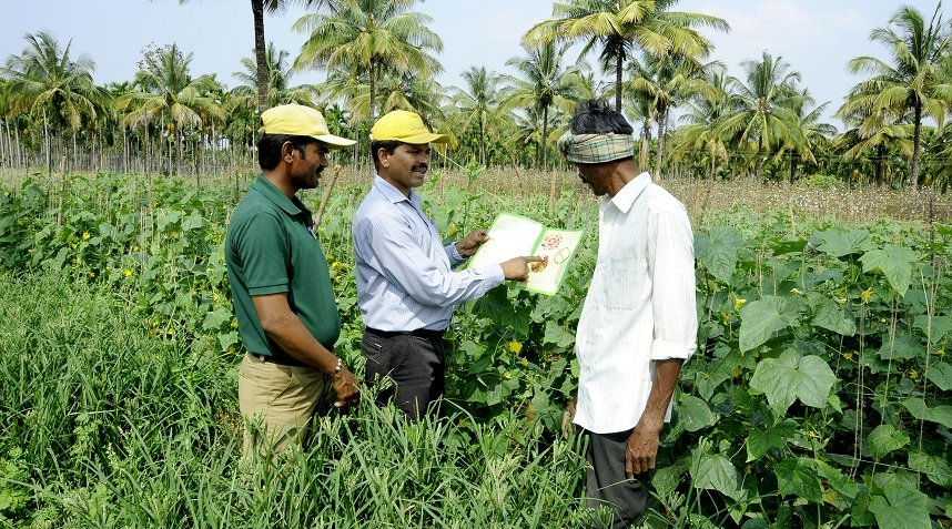 Contract Farming For Farmers In India