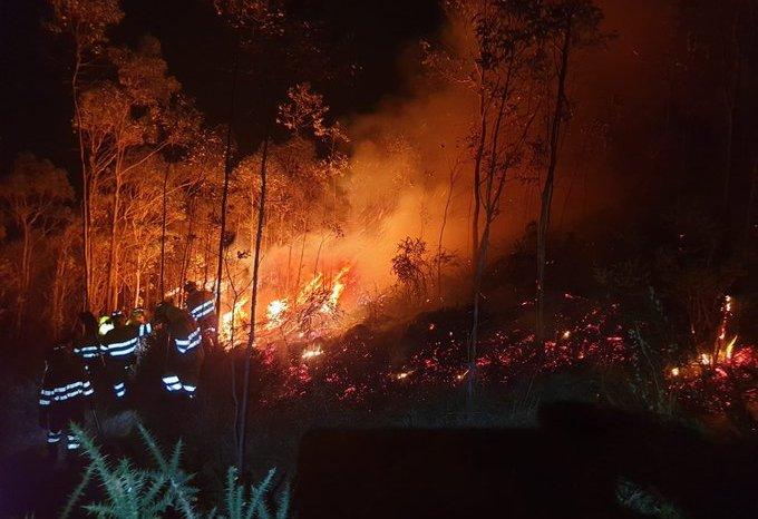 El incendio provocado en Vega de Liébana afecta a 12 hectáreas de robledal adulto