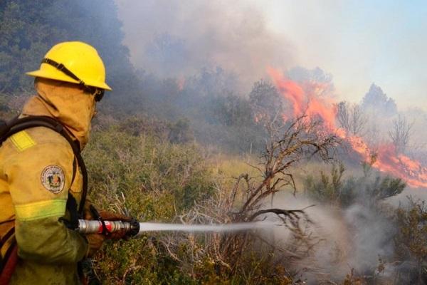 Peligrarían los servicios que debe brindar el Parque Nacional Lanín, por falta de personal
