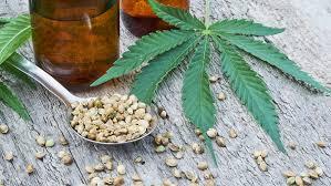 OMS propone retirar el cannabis de su listado de drogas peligrosas