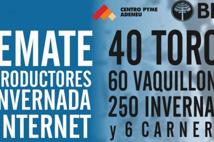 Se realiza este viernes la 9° Expo Bovinos del Neuquén